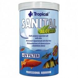 Sanital 100 ml
