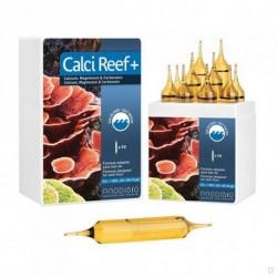 CalciReef+