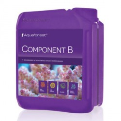 Component B 2 l