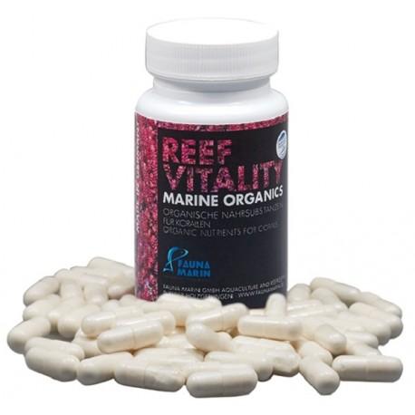 Fauna Marin Reef Vitality